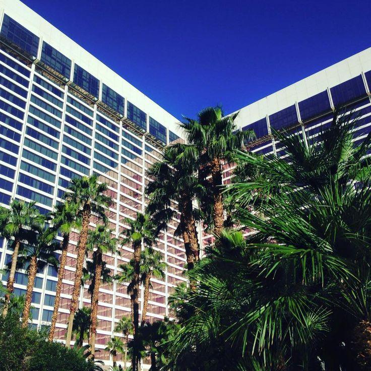 Flamingo hotel casino las vegas nv new york state health deparment igt