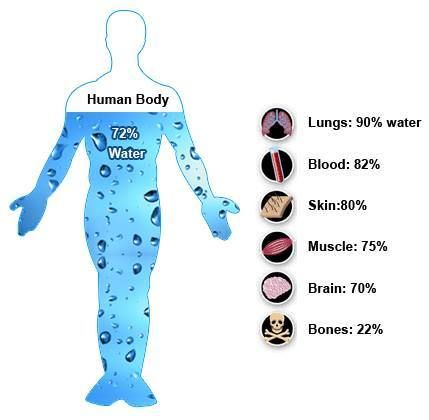 Hydration and Minerals are a vital part of every Health Program www.alkalizetogo.com #alkalinewater #hydration