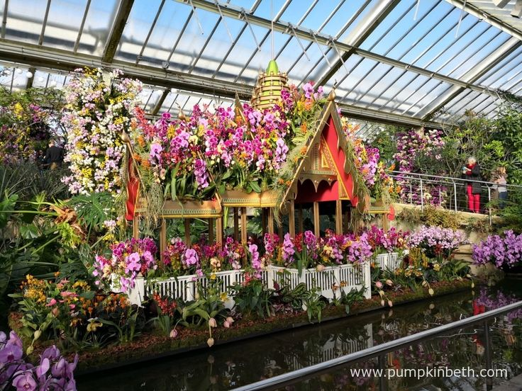 This golden, floating Palace was inspired by the Thai Palace of Bang Pa-In, it was especially created for the 2018 Orchid Festival. Pictured inside the Princess of Wales Conservatory, at the Royal Botanic Gardens, Kew.