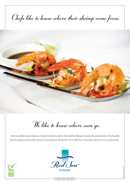 Red Sea Shrimp