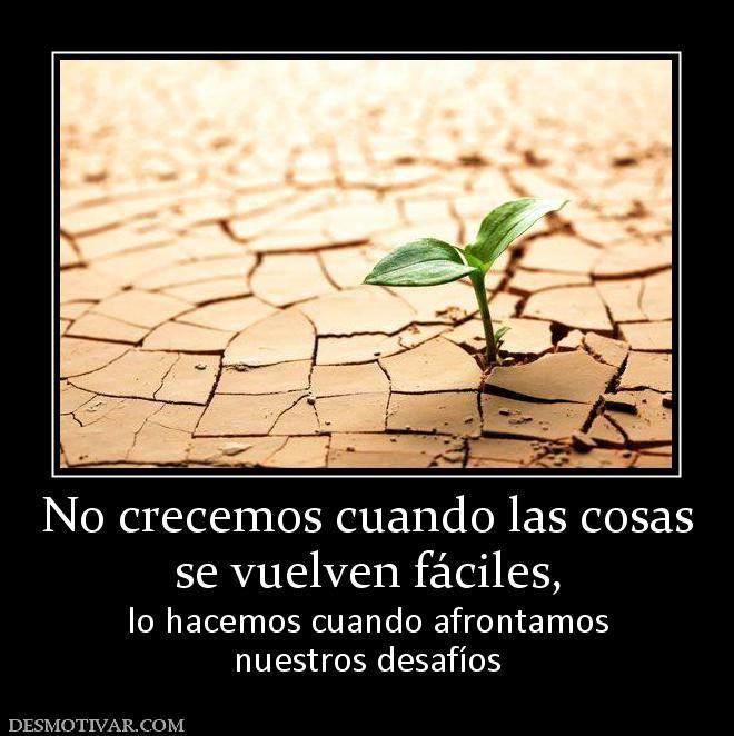 No crecemos cuando las cosas se vuelven fáciles,  lo hacemos cuando afrontamos nuestros desafíos