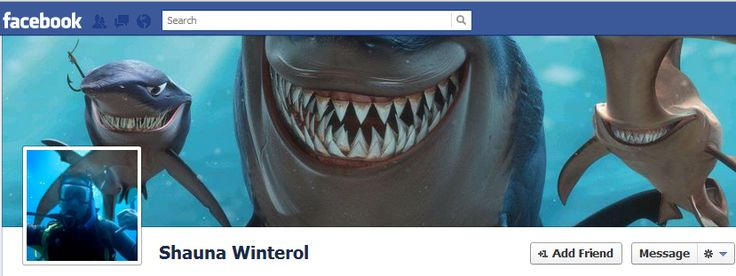 30 Amazing Facebook Timeline Covers