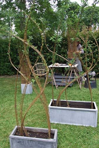 vivant saule comme jardins jardins aménagements décoration jardin ...