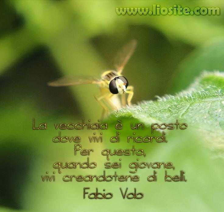 Fabio Volo - La vecchiaia è un posto [..] Questo credo sia proprio un ottimo consiglio! da condividere con tutti :) Buona serata!!   #FabioVolo, #ricordi, #vecchiaia, #giovinezza, #graphTag, #VisualTag, #immaginiParlanti, #CitazioniFotografiche, #citazioniItaliane, #Perledisaggezza, #Lifequotes, #perledacondividere,