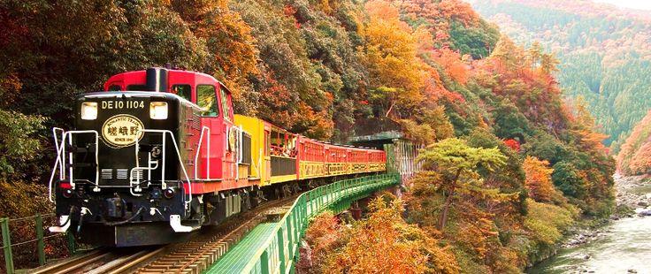 11月は京都嵯峨野トロッコ列車と紅葉です。