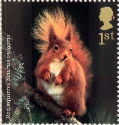 Woodland Animals 1st Stamp (2004) Red Squirrel