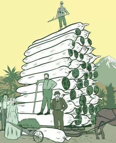 Marijuana Art | Medical Marijuana Quality Matters | Repined By 5280mosli.com…