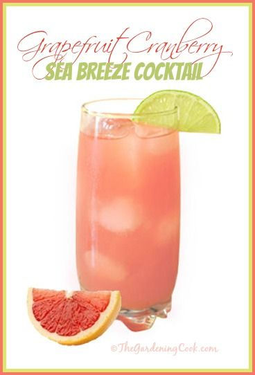 Grapefruit Cranberry Sea Breeze Cocktail made with Grey Goose Vodka!  Get the recipe http://thegardeningcook.com/grapefruit-cranberry-sea-breeze-cocktail/