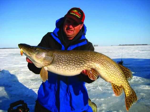 Look at the size of that northern pike ice fishing in for South dakota ice fishing