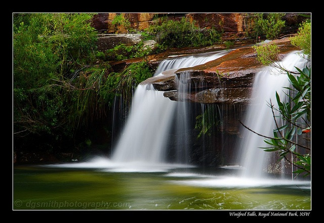 how to get to winifred falls from sydney