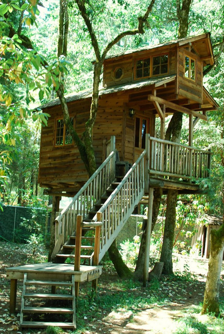 my treehouse How to build a treehouse in the backyard make a world-class backyard tree house that will stand the test of time would my kids take to the treehouse.