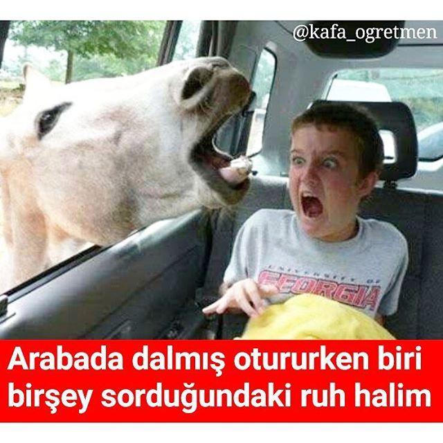 #funnypics#caps#tespit#okul#öğretmen#öğrenci#komikcaps#komedi#mizah#kahkaha#gülmece#gülmek#film#kitapsever#kitapokuyorum#kitap#kafa_ogretmen http://turkrazzi.com/ipost/1523147349709554321/?code=BUjTnHQBAKR