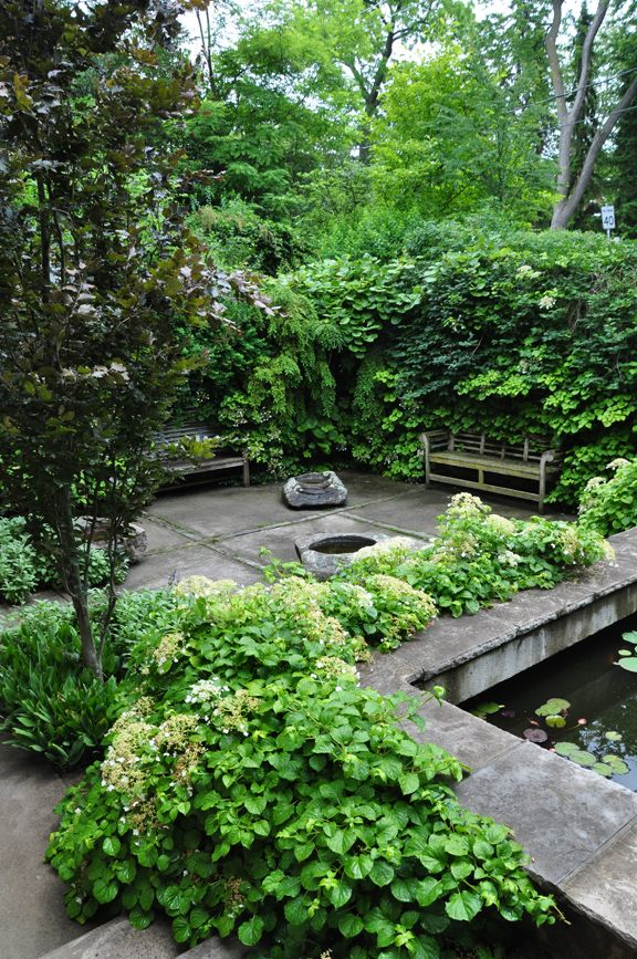 Sunken courtyard garden w/ hydrangea and kiwi vines; Neil Turnbull
