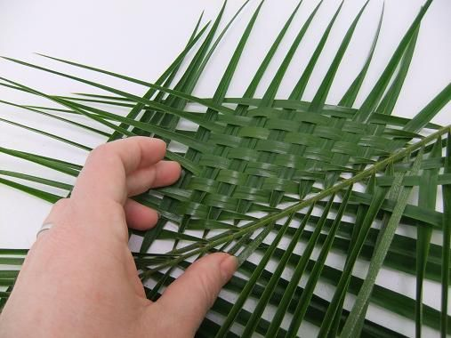 Continue weaving all the way down the palm leaf