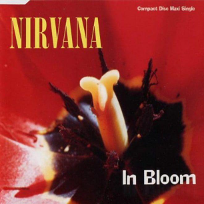 Nirvana, 'In Bloom'