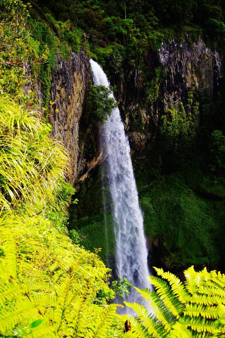 Auckland, Bridal Falls