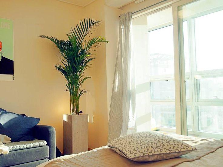 Enjoy, Bright Apartment at the Central Seoul! — Квартиры в аренду в г. Мапо-гу