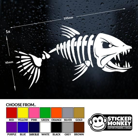 CARP FISH Tackle box//Angling//Fishing//Boat//Car//Window//Bumper Vinyl Sticker//Decal