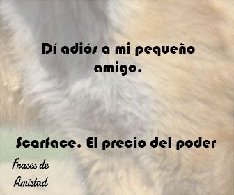 Frases de peliculas de amor de Scarface. El precio del poder(1982)