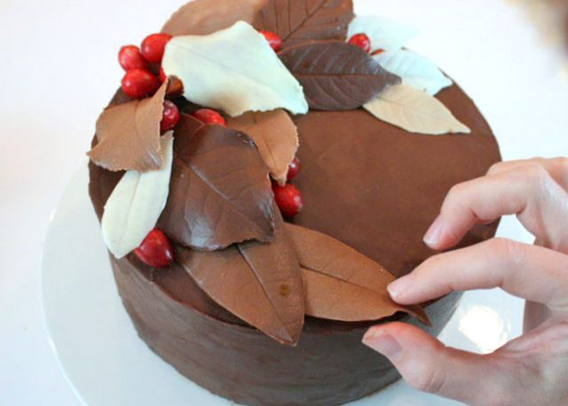 Chocolate Leaves for a Christmas Yule Log.  They were surprisingly easy and looked great.