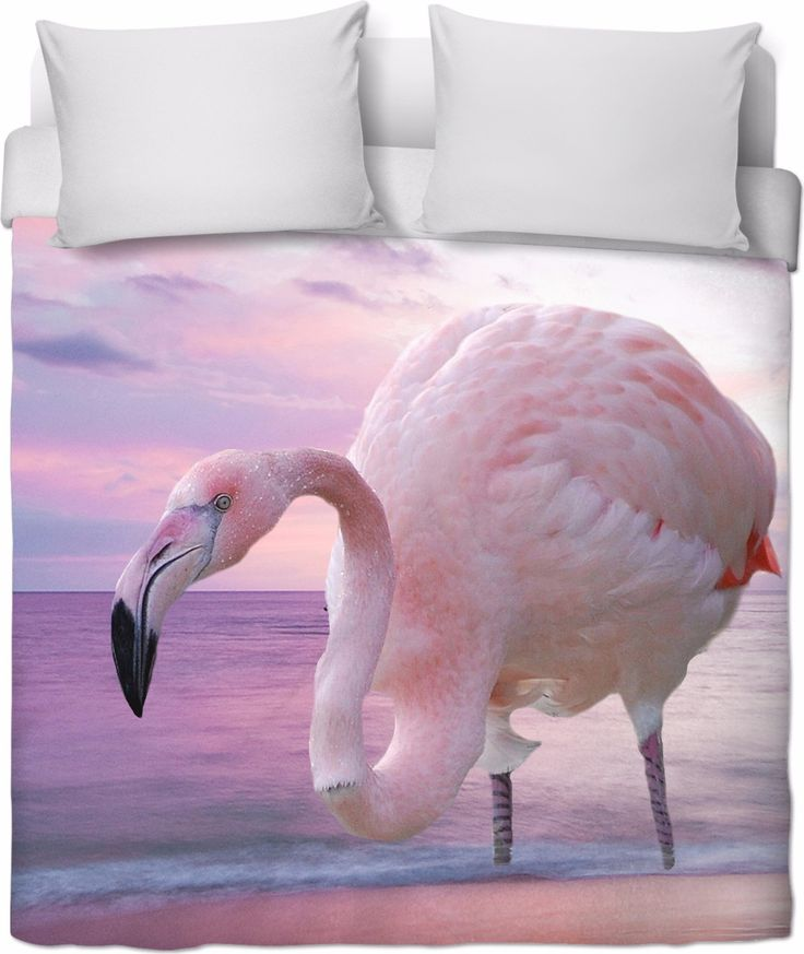 Check out my new product https://www.rageon.com/products/flamingo-and-pink-sky-duvet-cover?aff=BWeX on RageOn!