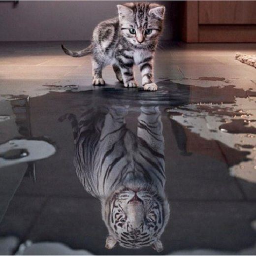 3d diy diamond embroidery painting animal cat tiger 20*20 см. #Oly