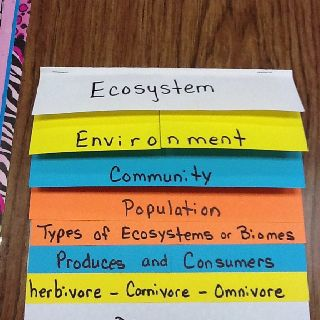 Foldable for teaching ecosystems. This could be a good way for students to comprise all the facts about ecosystems. 9(A) observe the way organisms live and survive in their ecosystem by interacting with the living and non-living elements;