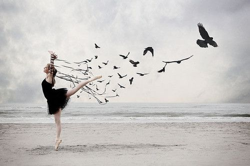 Flight.: At The Beaches, Tattoo'S Idea, Sweet Tattoo'S, Black Swan, Ballet, Crows, Birds, Dance, Ravens