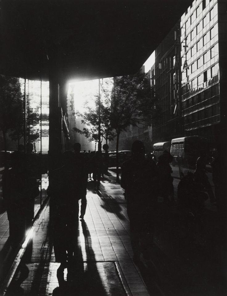 Sameer Makarius: Untitled, 1950s