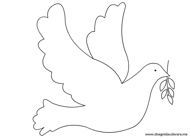 Dove coloring page More