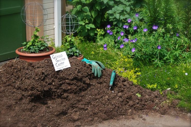 Learn to mulch like a pro.