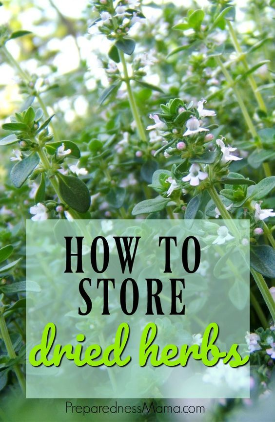 1023 best diy herb garden images on pinterest herbal medicine hand made gifts and healing herbs - Medicinal herbs harvest august dry store ...