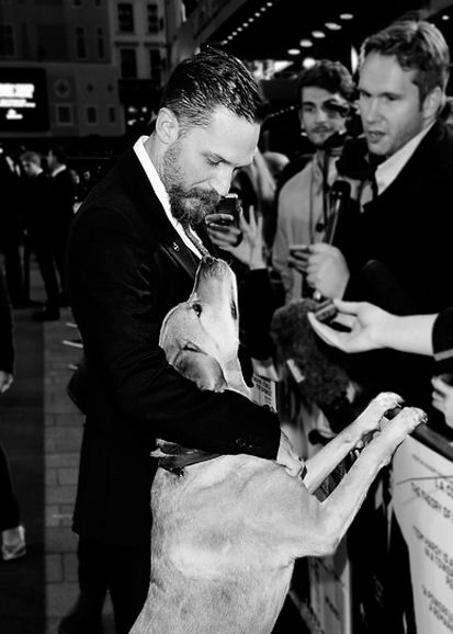Tom Hardy and Woody at the UK Premiere of Legend | Sept 3, 2015 | London