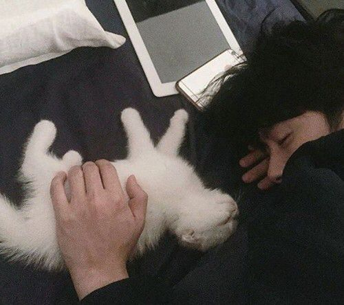 What can be nicer than an Asian boy and a cat ?