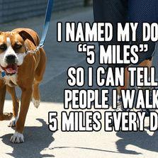 I named my dog 5 miles