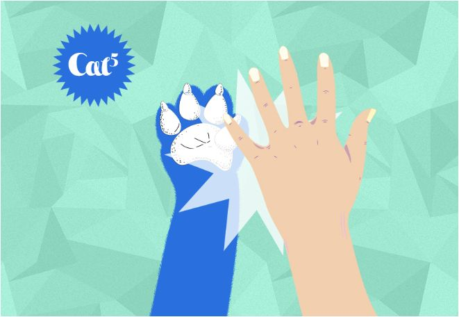 Idée 2 : le #Cat5. Le secret de ce #High5 un peu particulier c'est ici : http://samsungmobilefrance.tumblr.com/