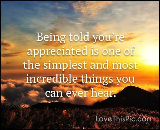 Being told you're appreciated love love quotes quotes quote life inspirational love quote appreciate appreciation family quotes friendship quotes appreciation quotes