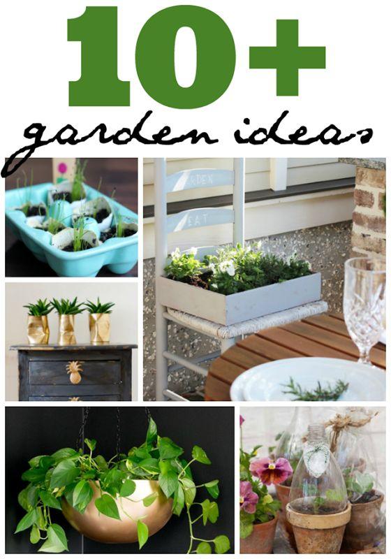 10 Garden Ideas. The RulesHerb GardenPatio ...