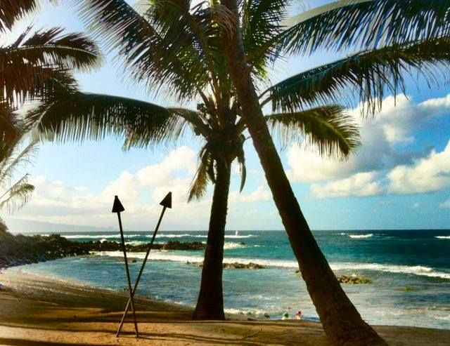 10 best images about maui 39 s best north shore beaches on for Hawaii tides for fishing