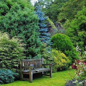 conifer garden design ideas flowers plants gardens pinterest gardens garden ideas and landscaping ideas