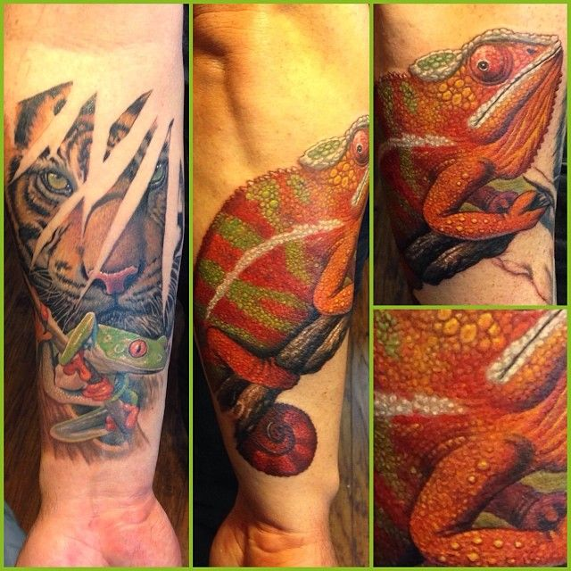 Evil Chameleon Tattoo: 206 Best Infamous Tattoo Company Images On Pinterest