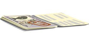 South America Visa passport information