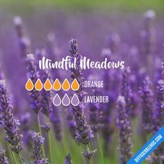 Mindful Meadows - Essential Oil Diffuser Blend