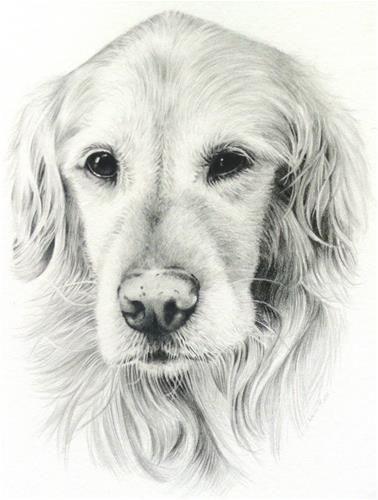 "Daily Paintworks - ""Zoe"" - Original Fine Art for Sale - © Heidi Rose"