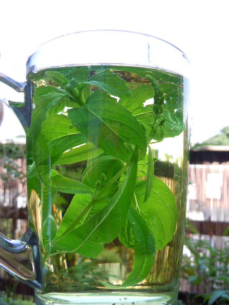 Verse thee van eigen balkon of tuin
