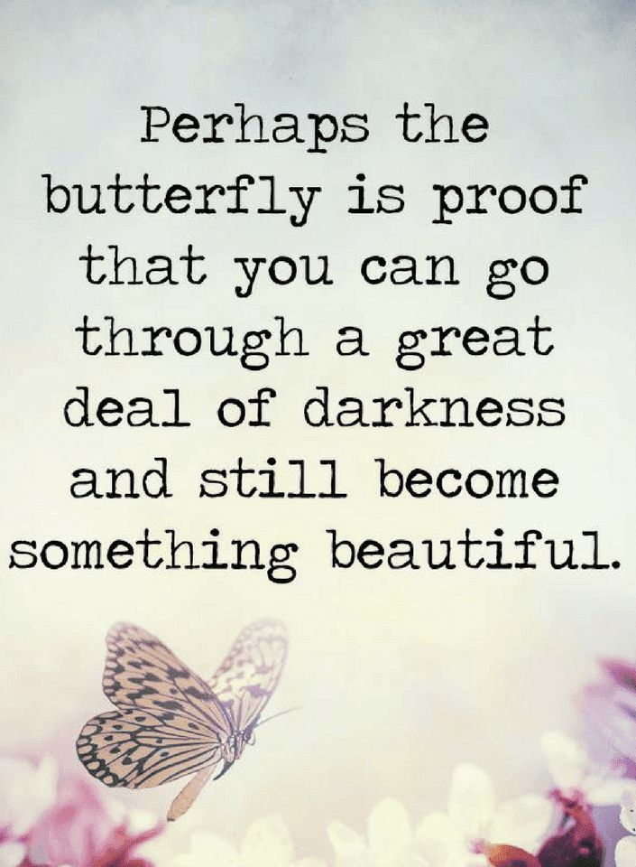 Butterfly Quotes Mesmerizing 139 Best ~ Butterfly Quotes ~ Images On Pinterest  Butterflies