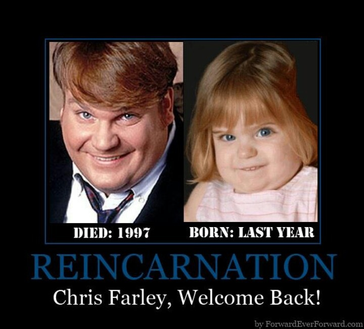 Chris Farley Tommy Boy Quotes: Best 25+ Chris Farley Quotes Ideas On Pinterest