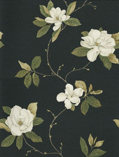 "Sweet Bay (DPFWSW103) - Sanderson Wallpapers - A subtle magnolia tree in full bloom with fabulous off white blossoms on a gently undulating stem, against a soft black background – stunning. Available in other colours with coordinating fabric.  Please ask for a sample for true colour match. $88 20.5"" X 32'9'"