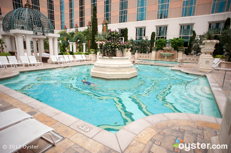 17 best images about las vegas on pinterest clark county - Planet hollywood las vegas swimming pool ...