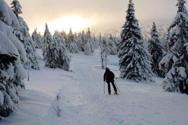 Karkonosze, Szrenica / fot. Shutterstock